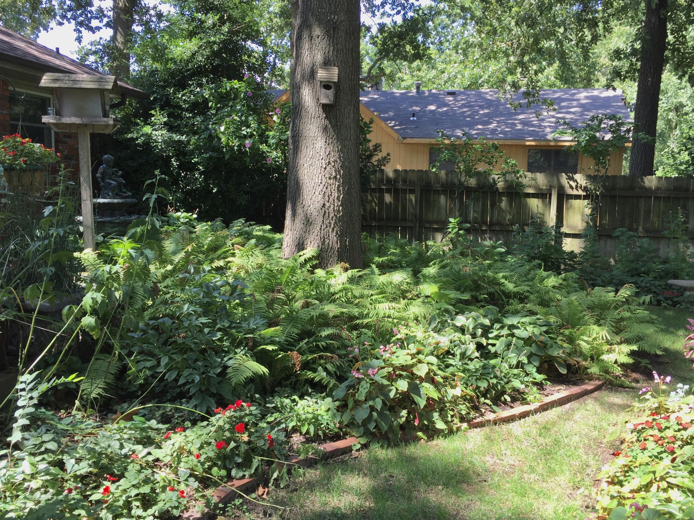 Garden Of The Month Garden Club Of Rogers